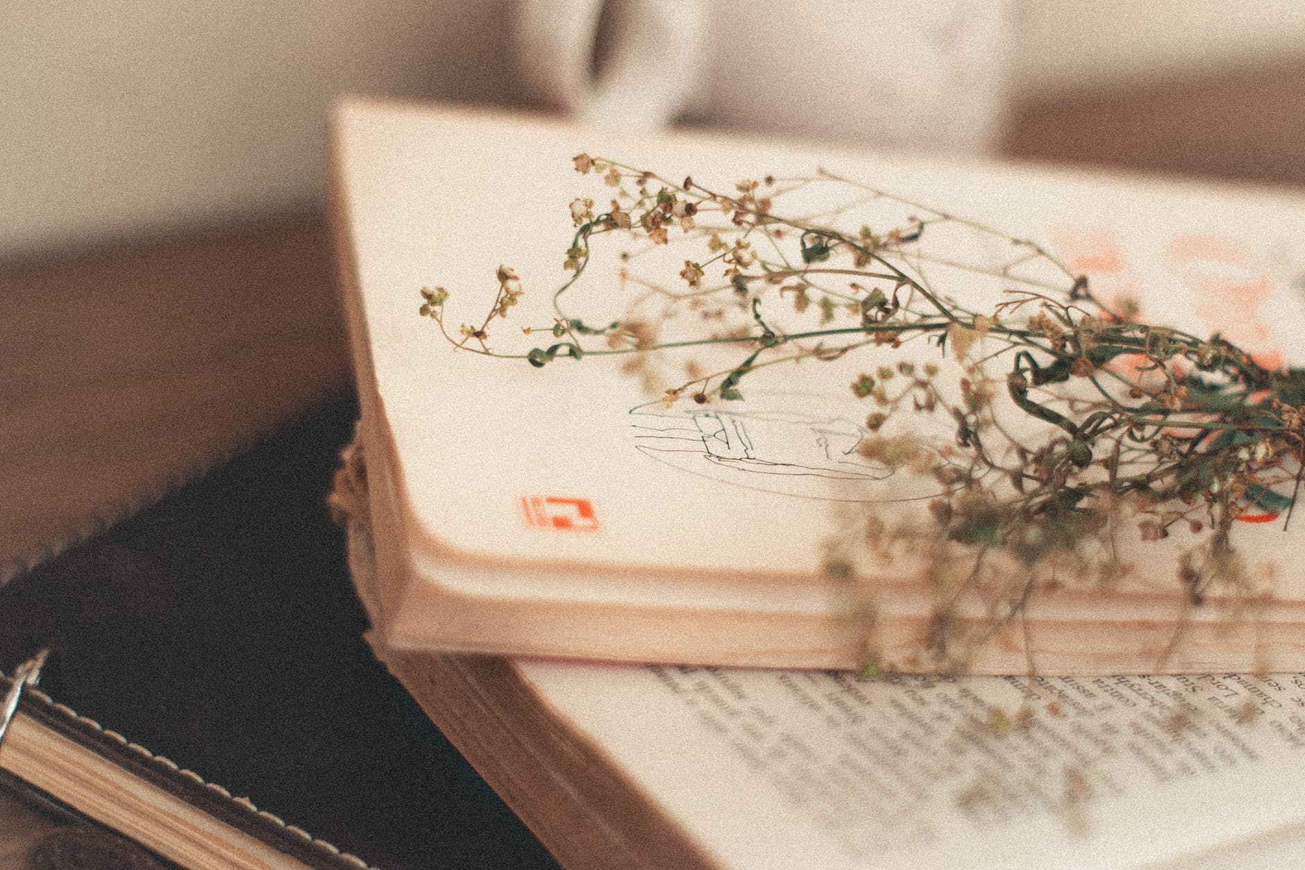 feuille verte sur pile de livres