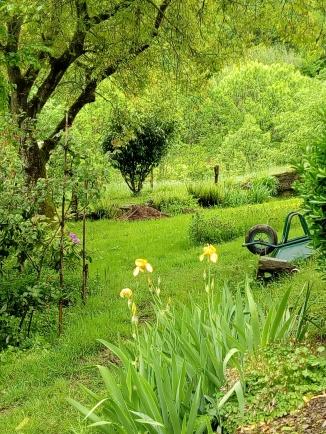 Petit jardin des voisins